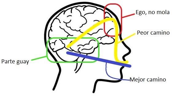 Ilustración perfil de cabeza. dos líneas atraviesan el cerebro, una directamente a la boca y la otra haciendo un desvío por el ego